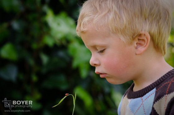 Outdoor Toddler Portrait holding a ladybug